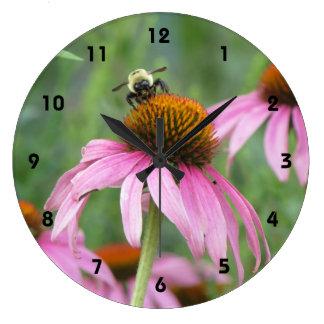 Bee on Purple Coneflower Clocks