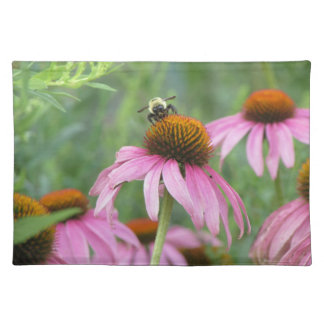 Bee on Purple Coneflower Placemats