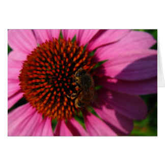 Bee on Purple Flower Card