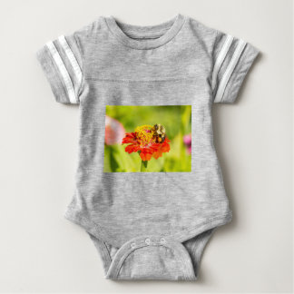 bee on red flower with pollen sacs baby bodysuit