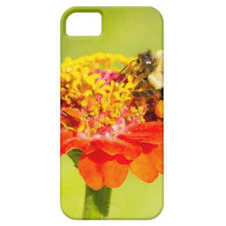 bee on red flower with pollen sacs iPhone 5 cover