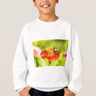 bee on red flower with pollen sacs sweatshirt
