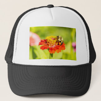 bee on red flower with pollen sacs trucker hat