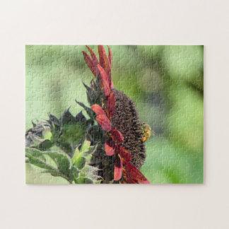 Bee on Red Orange Sunflower Jigsaw Puzzle