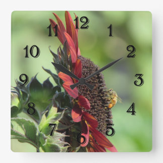 Bee on Red Orange Sunflower Square Wall Clock