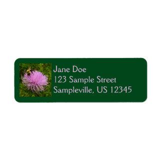 Bee on Thistle Flower Return Address Label