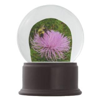 Bee on Thistle Flower Snow Globe