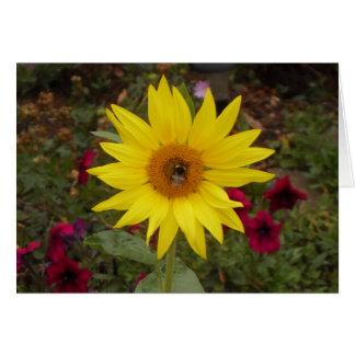 Bee on yellow sunflower card