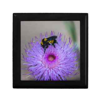 Bee Pollinating Wildflowers Gift Box