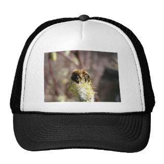 Bee Pollinator Trucker Hat