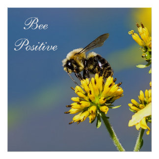 Bee Positive Bumble Bee Poster