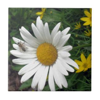 Bee Resting on shasta Daisy Tile