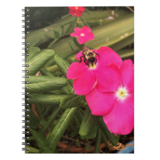 bee spiral note book