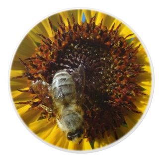 Bee & Sunflower photo knob