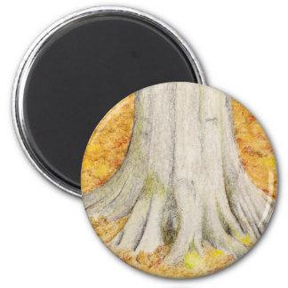 Beech Feet Magnet
