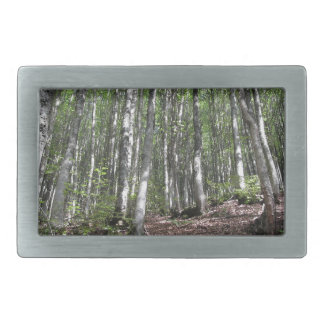 Beech forest landscape in summer . Tuscany, Italy Rectangular Belt Buckle
