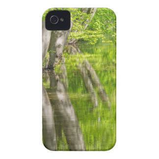 Beech tree trunks with water in spring forest iPhone 4 case
