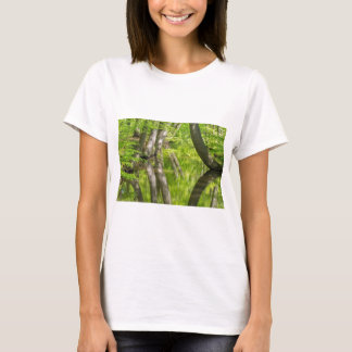 Beech tree trunks with water in spring forest T-Shirt