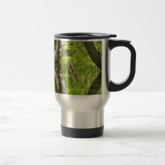 Beech tree trunks with water in spring forest travel mug