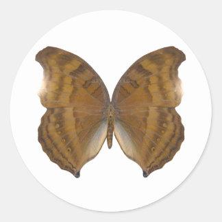 BeechWing Butterfly Round Sticker