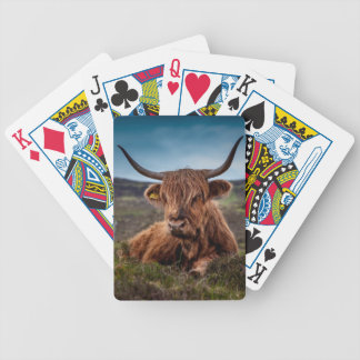 beef bicycle playing cards