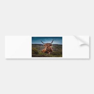 beef bumper sticker
