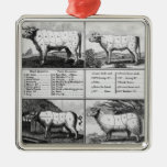 Beef, Veal, Pork, and Mutton Cuts, 1802 Silver-Colored Square Ornament