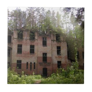 Beelitz hospital ruin, Alpenhaus Tile