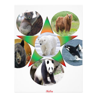 beer, bear, wildlife , animal,zool letterhead