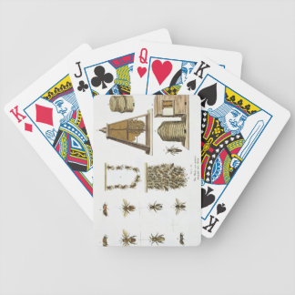 Bees and bee-keeping, from 'The Young Landsman', p Bicycle Playing Cards