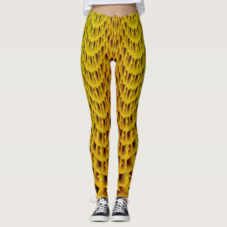 BEES EYE VIEW LEGGINGS