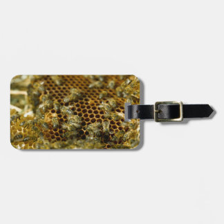 Bees In Hive, Western Cape, South Africa Luggage Tag