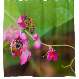 Bees On Coral Vine Flowers Photograph