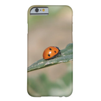 Beetle Barely There iPhone 6 Case