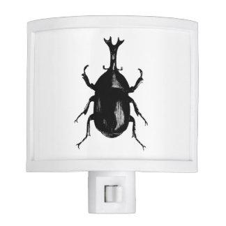 Beetle Beetles Insect Night Lites