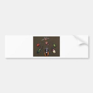 Beetle Circle of Fantasy Bumper Sticker