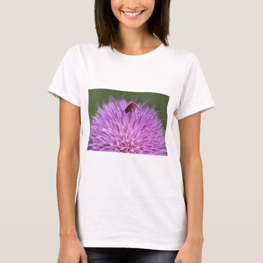 Beetle on Purple Milk Thisle Photograph T-Shirt