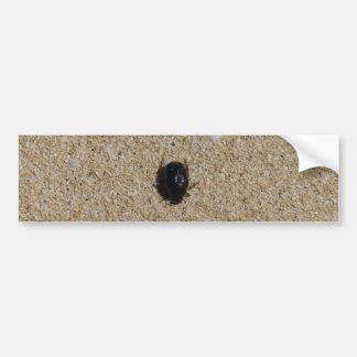 Beetle On Sand Nature Photo Bumper Sticker
