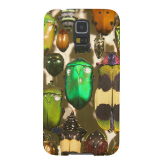 Beetles, Bugs and Insects Case For Galaxy S5
