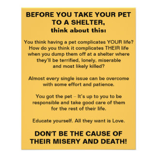 Before You Take Your Pet To A Shelter flyer