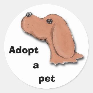 begging, Adopt, a, pet Classic Round Sticker