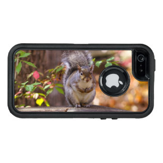Begging Squirrel OtterBox Defender iPhone Case