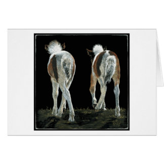 """Beginning Line Dancing"" Foal Card"