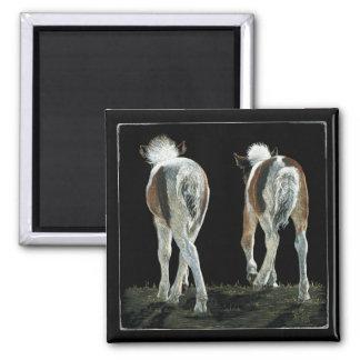"""""""Beginning Line Dancing"""" - Foal Magnet"""