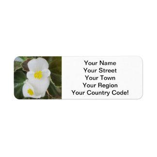 Begonia Garden Flower White Return Address Label