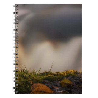 Behind the Scenes Notebooks