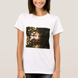 Behold and Be Awed! woman's t-shirt