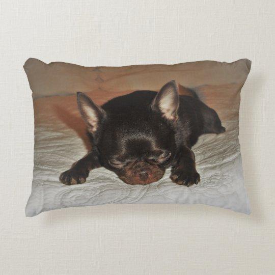 beige cushion pink pup maroon chihuahua lying