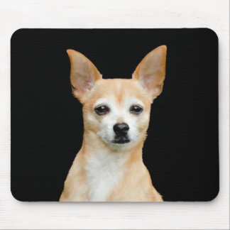 Beige painted chihuahua on black background mouse pad