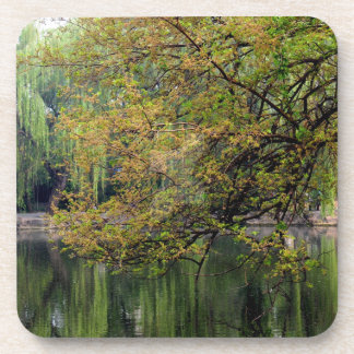 Beijing Zoo Pond Drink Coaster